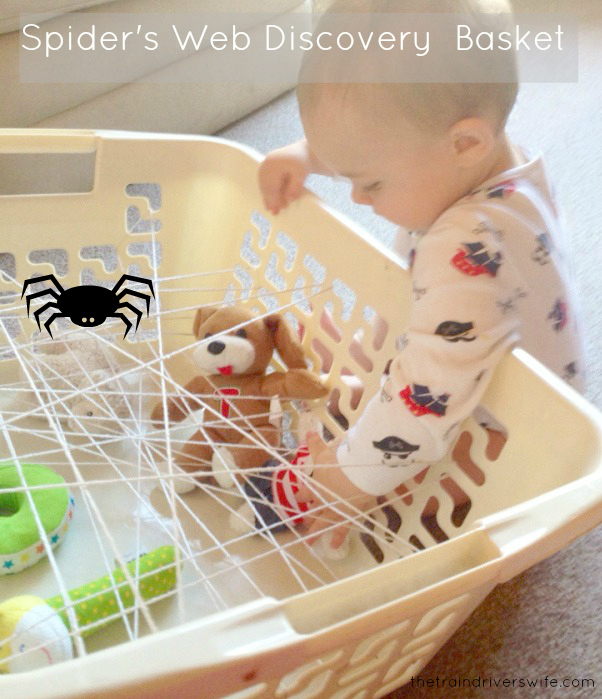 1 spider's web discovery basket
