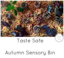 Taste safe autumn fall sensory bin